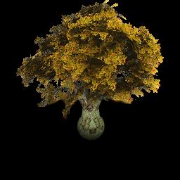 tree of life quote toast